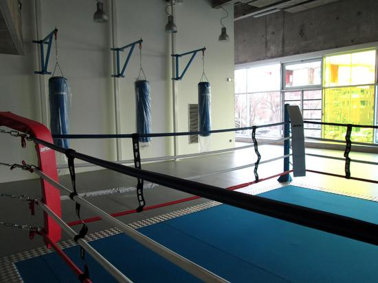 salle de boxe et de musculation de la piscine du grand parc bordeaux. Black Bedroom Furniture Sets. Home Design Ideas